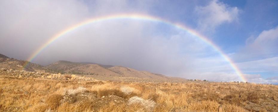Rainbow - Galena Times
